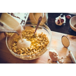 Kuidas valmistada aeglase mahlapressiga tofut